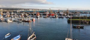 gigs at newlyn harbour image